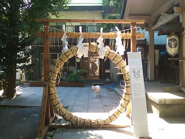 さいたま市北区アートメイク出張人のお店ポエラヴァ 鈴木美沙子-SN3K1249.jpg